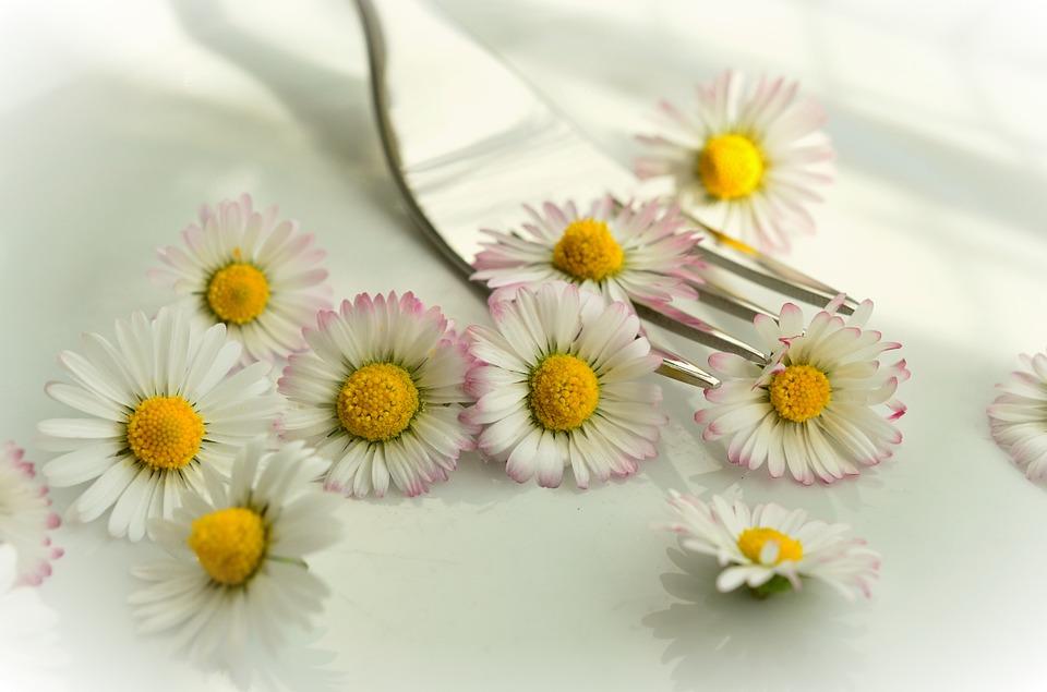 Innova en tu cocina usando las flores comestibles