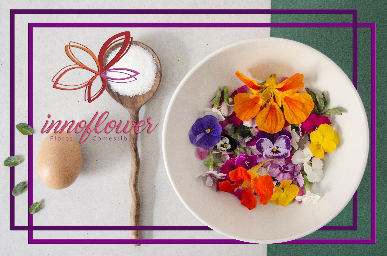 Innoflower, empresa de Aragón pionera en el cultivo y comercialización de flores comestibles