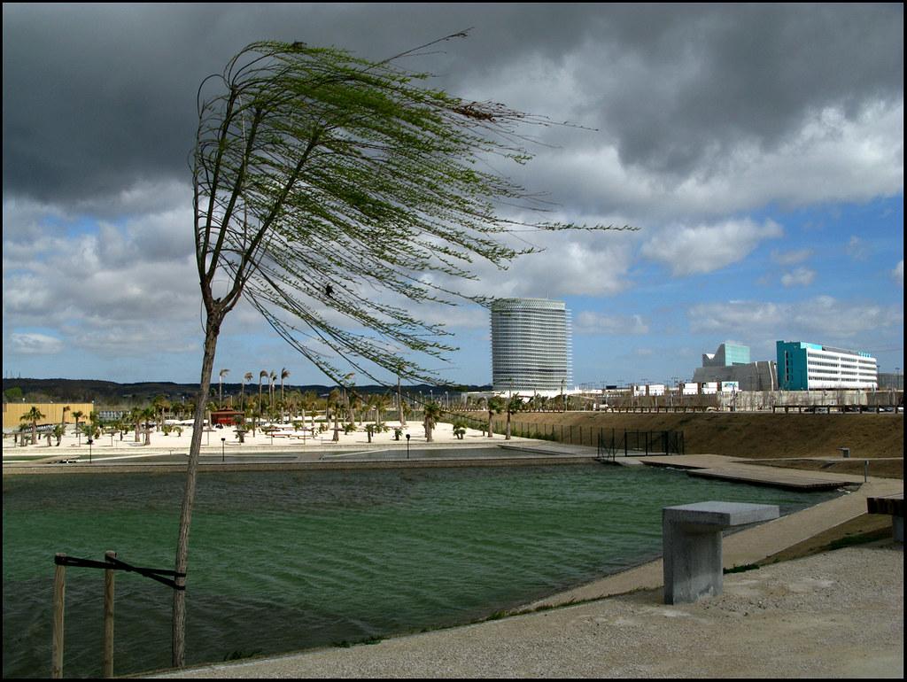 Cierzo en el parque del Agua en Zaragoza